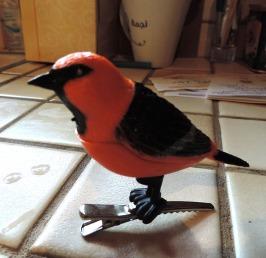 Singing bird-fx-MS