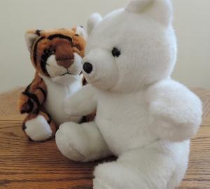Tiger-Bear!