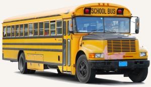 schoolbus-quintus